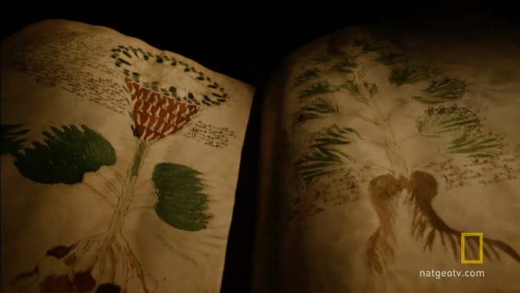 Click on this image to watch a National Geographic video about the Voynich Manuscript