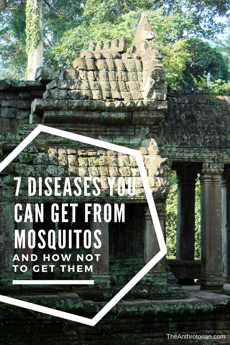 The temples at Angkor in Cambodia are surrounded by jungle — the perfect breeding grounds for disease-carrying mosquitoes.