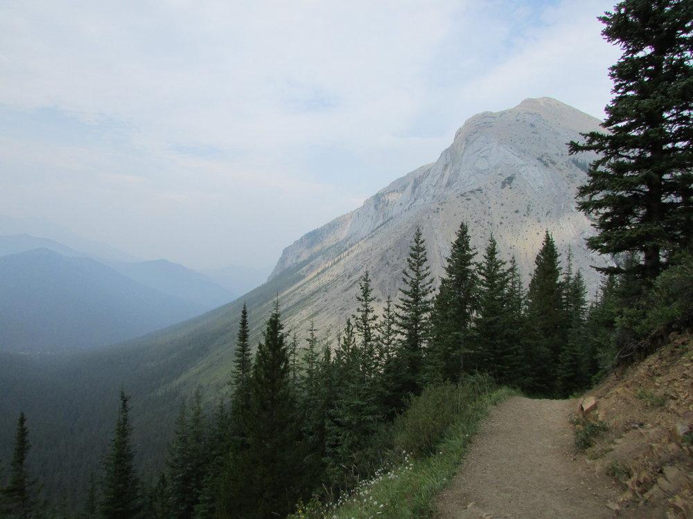 Sulphur Skyline Trail