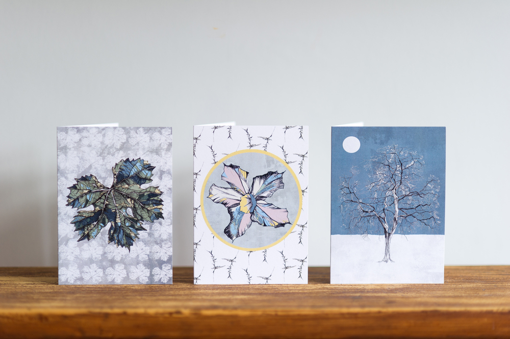 A selection of greetings cards are available and can be viewed on my website. An online shop will be coming soon, but if you can't wait, go to the contact page and place your order there!  Details to follow....