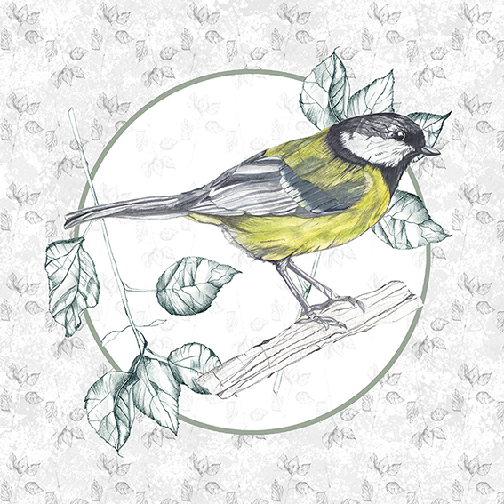 Great Tit Giclee Print