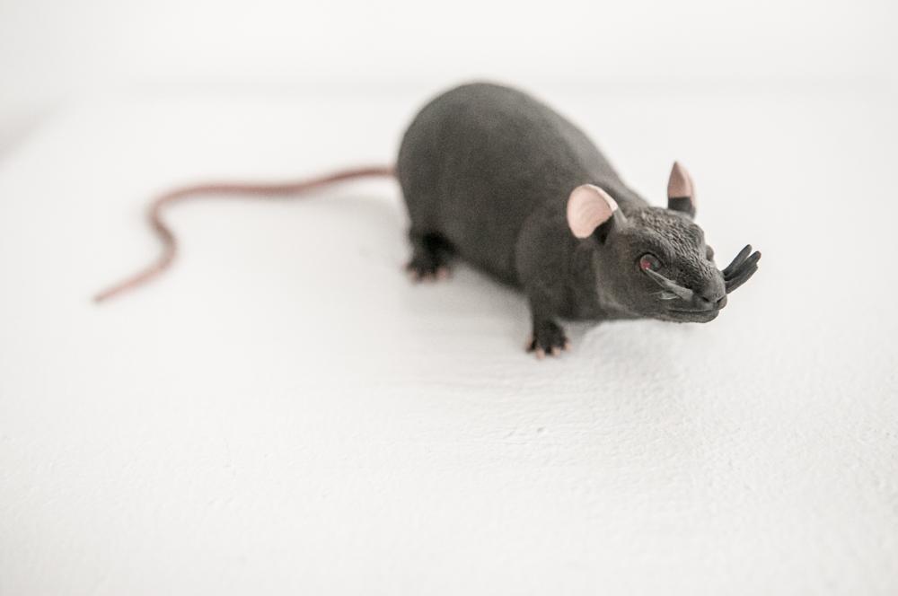 """""""Rat of Love"""" - 3P"""