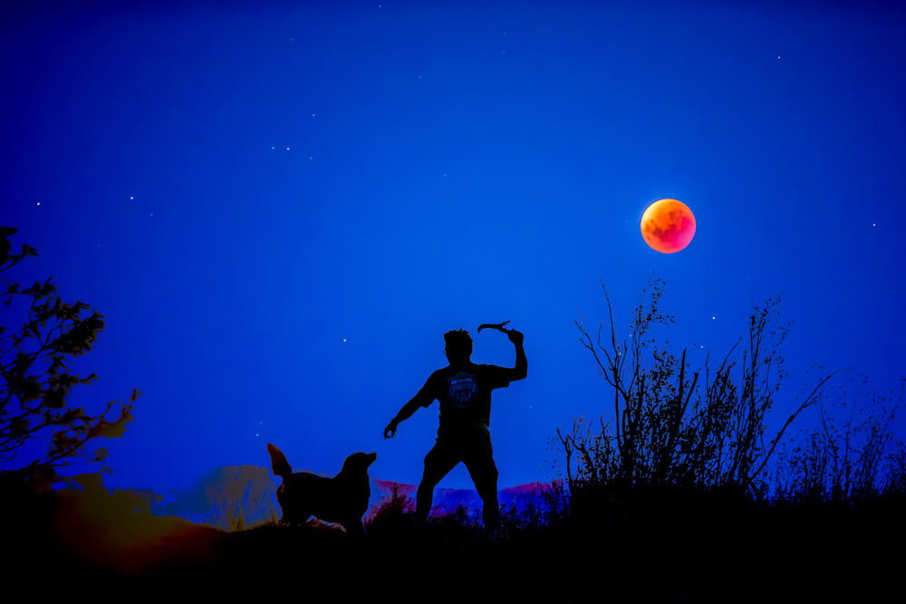 Man, Dog, Stick and the Super Blood Moon 2015