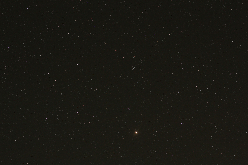 M  ARS IS SEEN IN THE CONSTELLATION VIRGO IN MAY 2014. IT'S THE BRIGHTEST OBJECT NEAR CENTRE BOTTOM.  MARS WILL BE GETTING BRIGHTER (AND LARGER IN A TELESCOPE)  IN THE COMING WEEKS. (JOHN MCPHEE)
