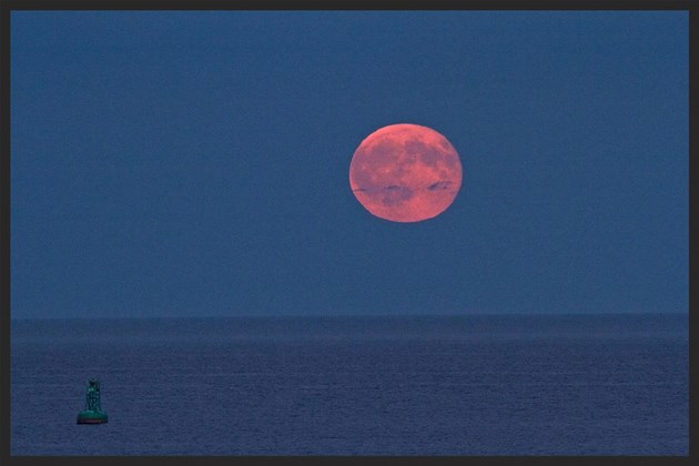 The Full moon rises above herring cove in nova scotia in august. (john mCPHEE)