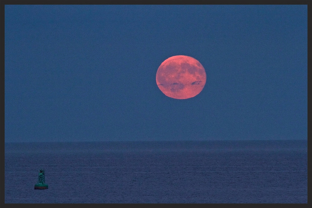 The full moon rises above Herring Cove in August. (JOHN McPHEE)