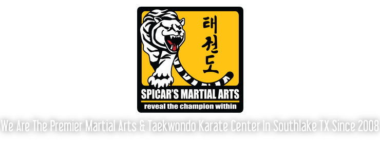 Spicar's Martial Arts, Self-Defense and Taekwondo Karate in Southlake TX 76092