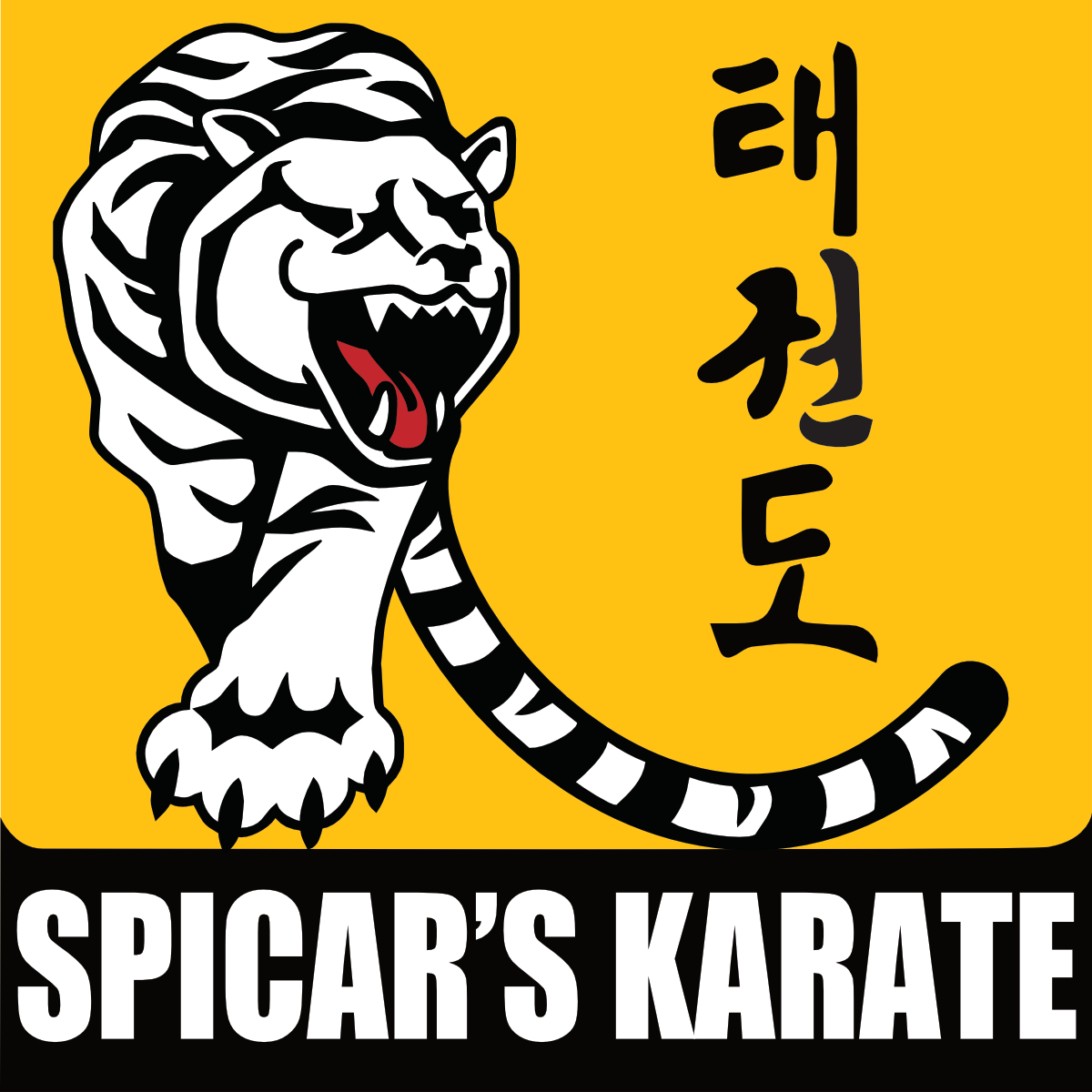 Spicar's Martial Arts