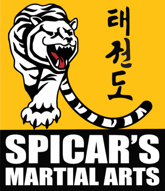 Spicar's Martial Arts in Southlake TX