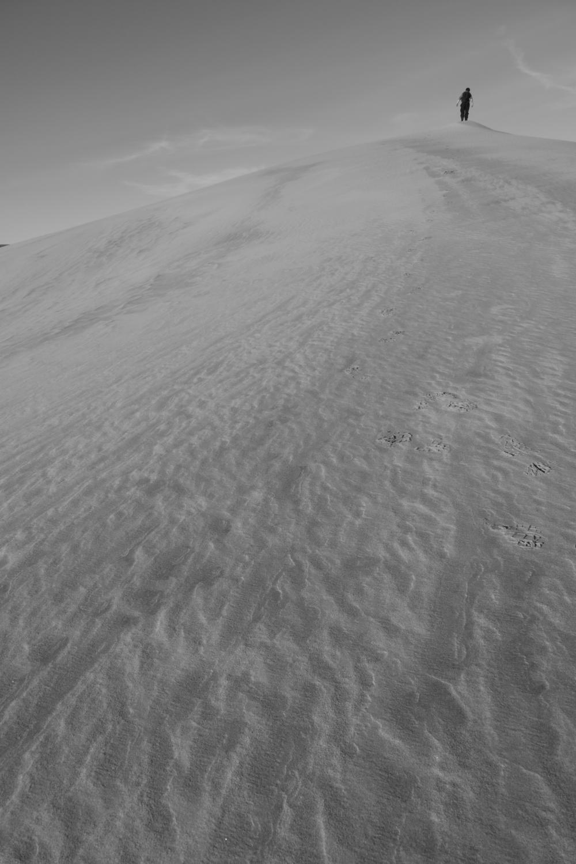 Dune Man #2
