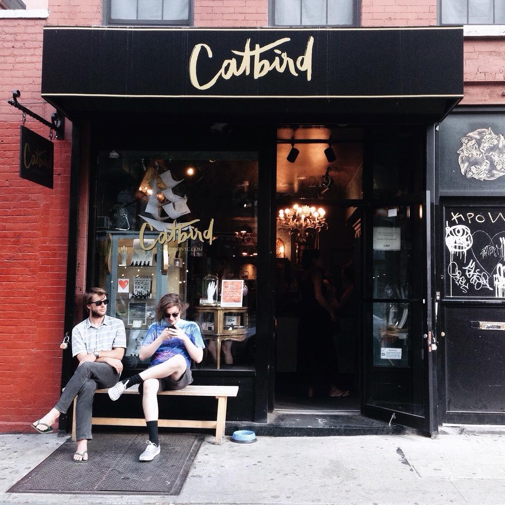 CATBIRD (BROOKLYN, NYC)