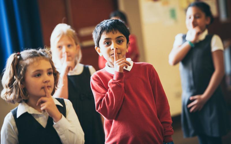 PPA Cover Primary Schools
