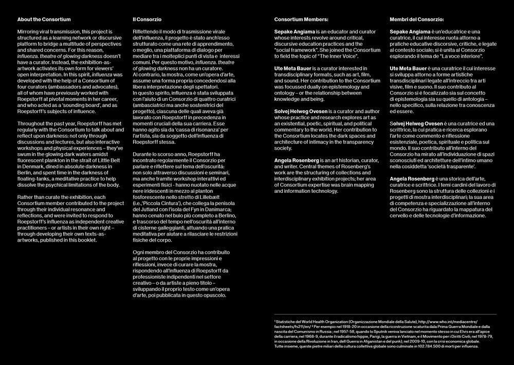 Influenza pamphlet4.jpg