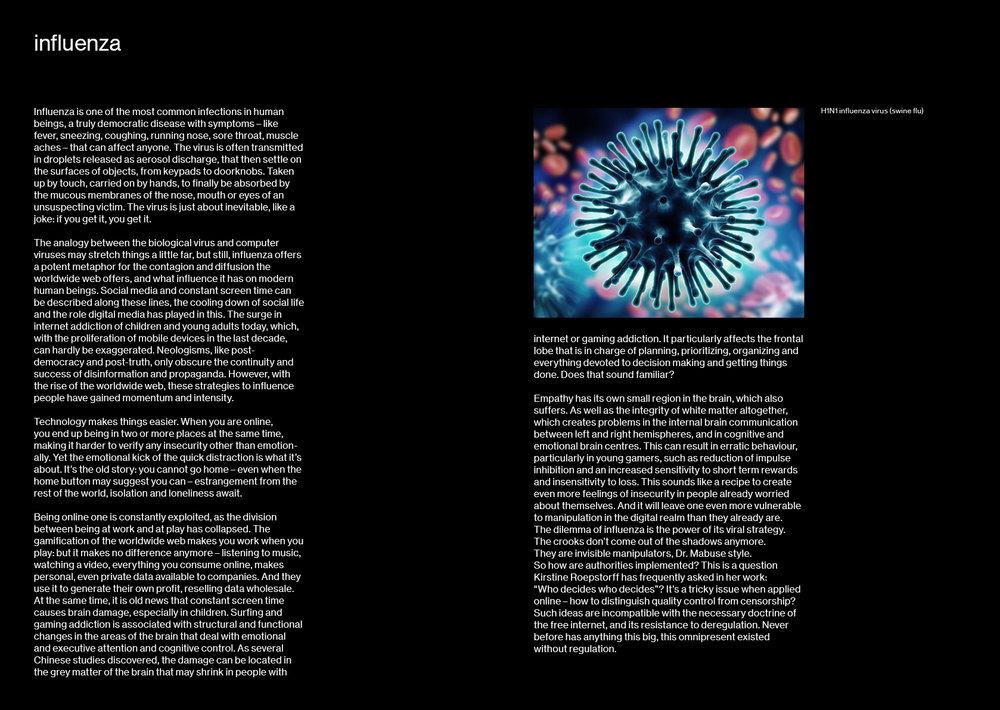 Influenza pamphlet9.jpg