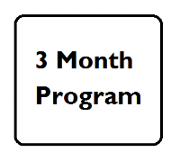 3 month program.png
