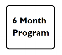 6 month program.png