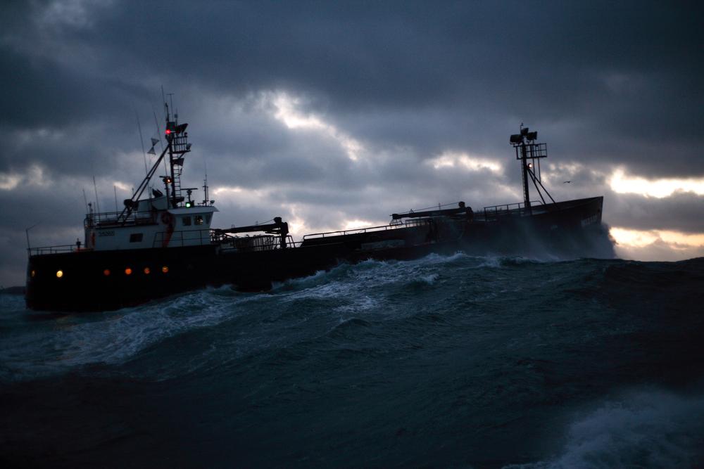 dusk boat.JPG