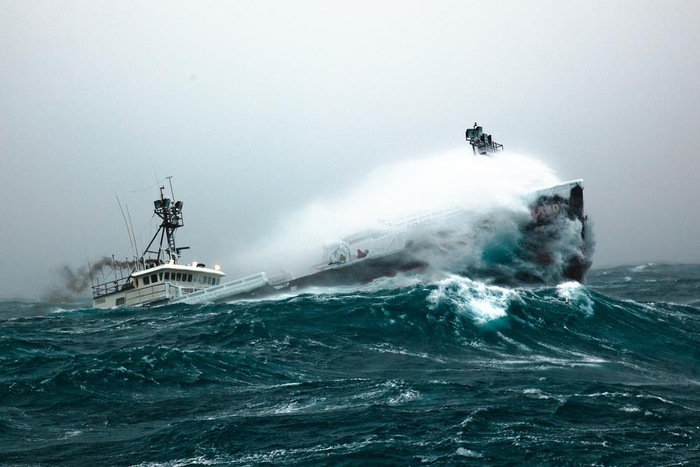 Wiz at sea1.jpg