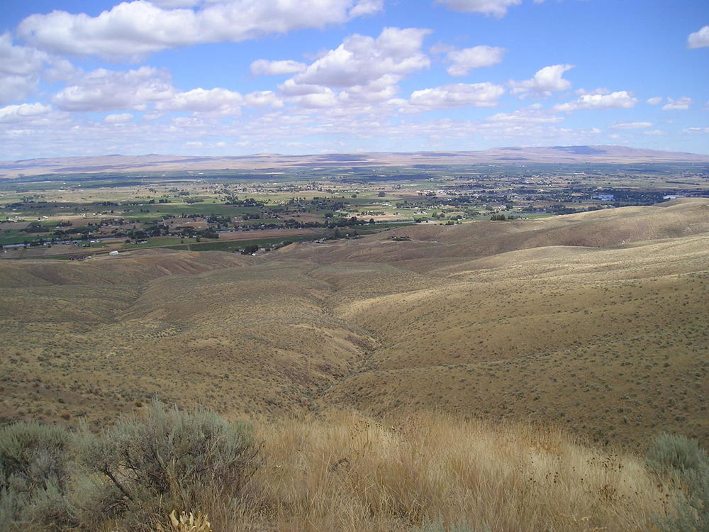 top of the hill 2.jpg