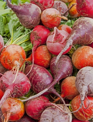 Image by Rosemary Ratcliff at FreeDigitalPhotos.net
