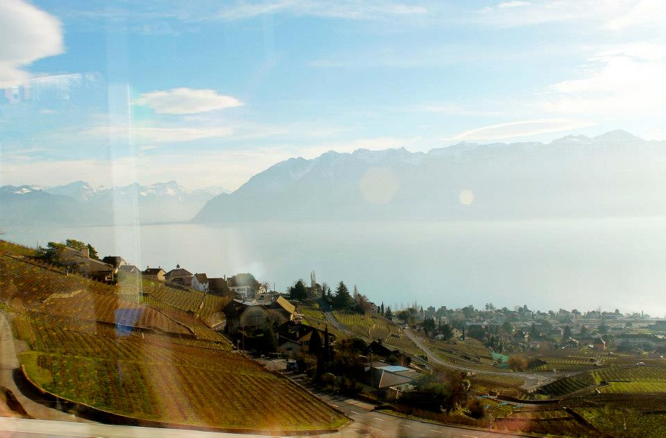Outskirts of Lausanne from my train window.