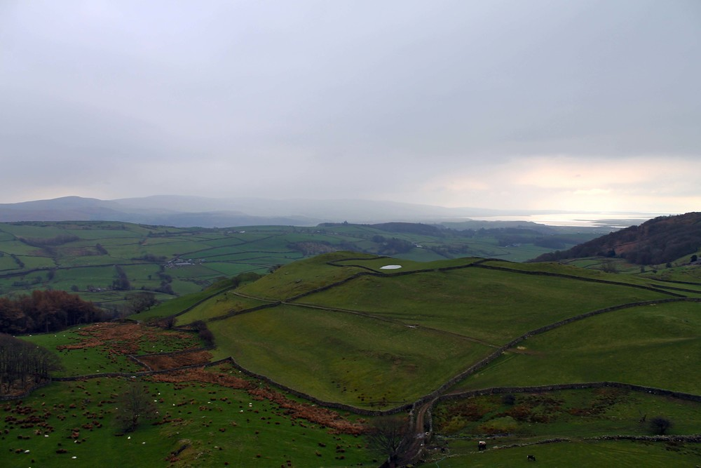 "The view from a trek up a hill, the ""lake"" in the distance is actually the Irish Sea!"