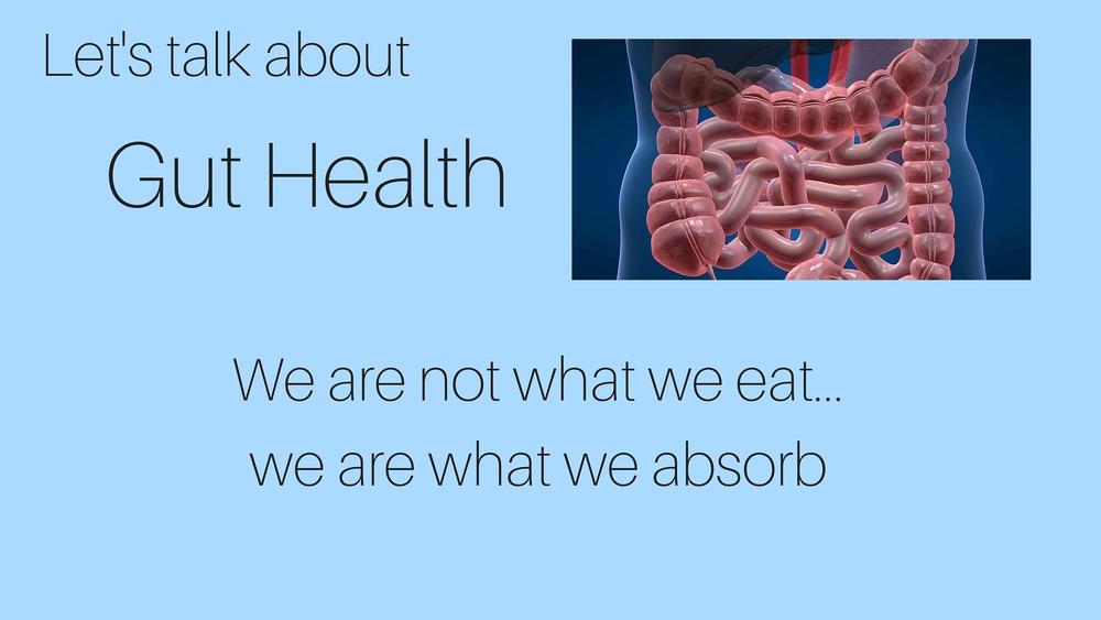 Gut Health- 1.jpg