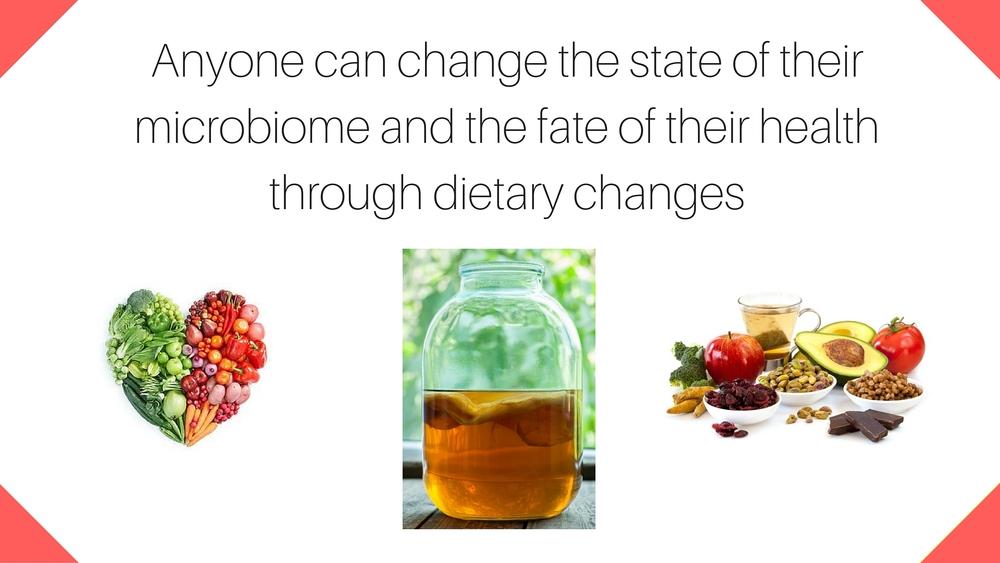 Gut Health 8.jpg