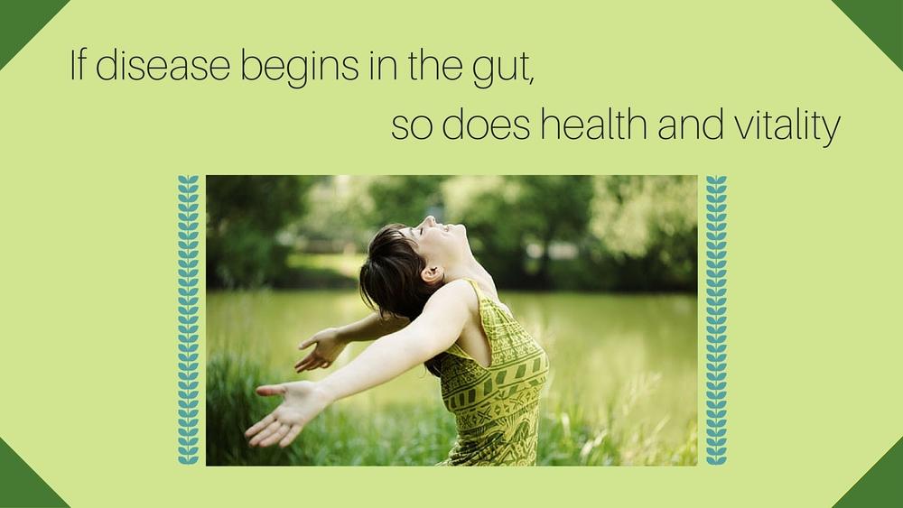 Gut Health-3.jpg