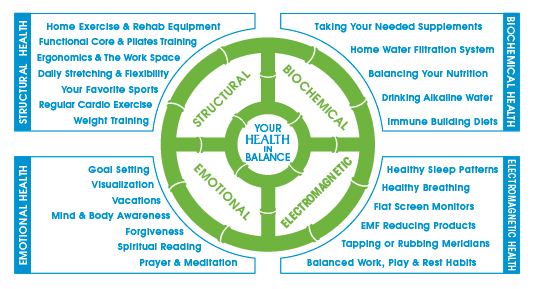 Wheel 7-  Your Health in Balance.jpg