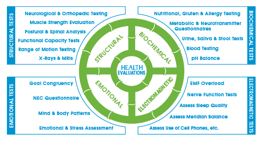 Wheel 5- Health evaluations,Tests.jpg