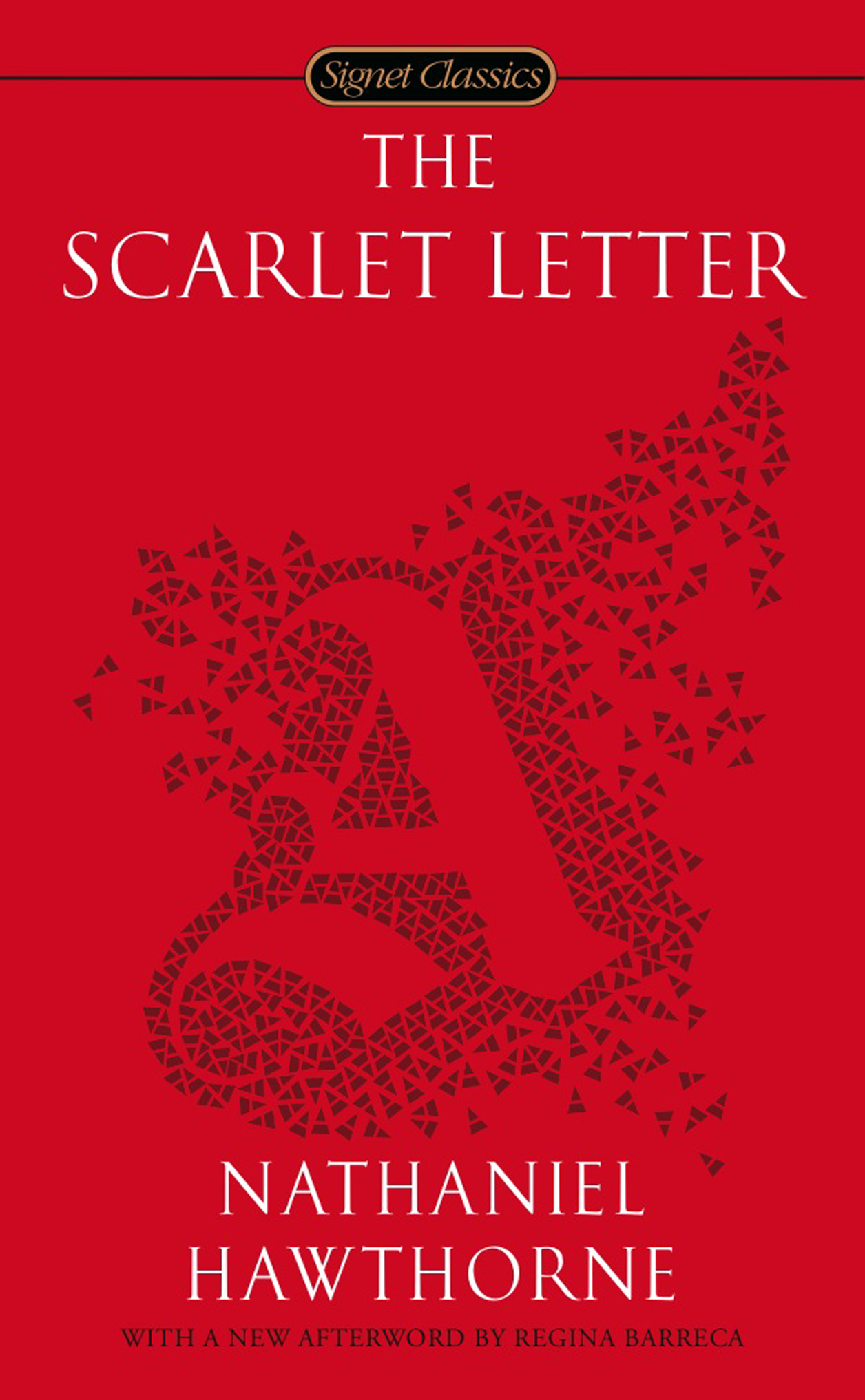 the scarlet letter book report essay