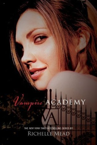 Vampire Academy Series | Clear Eyes, Full Shelves