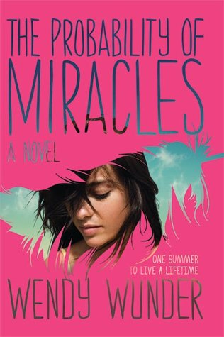 The Probability of Miracles by Wendy Wunder  Amazon  |  G  oodreads