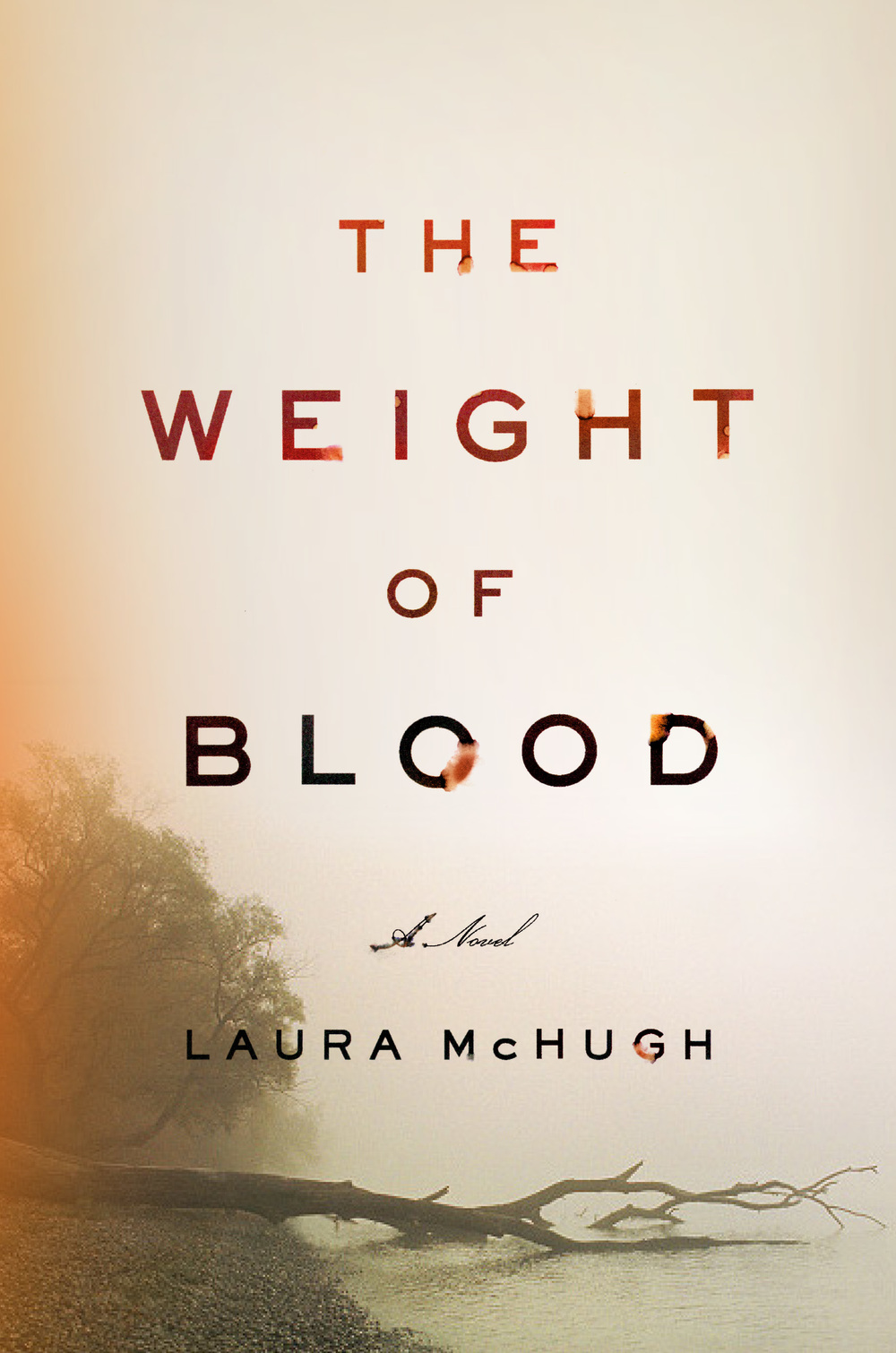 The Weight of Blood by Laura McHugh  Amazon  |  Goodreads