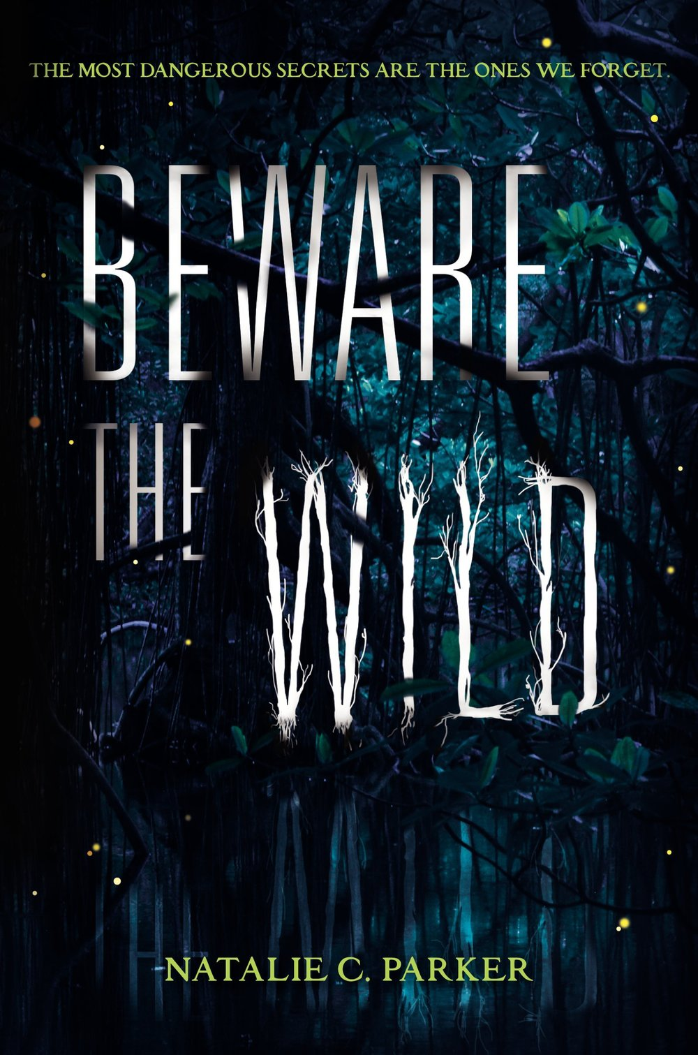 Beware the Wild by Natalie C. Parker on Clear Eyes, Full Shelves