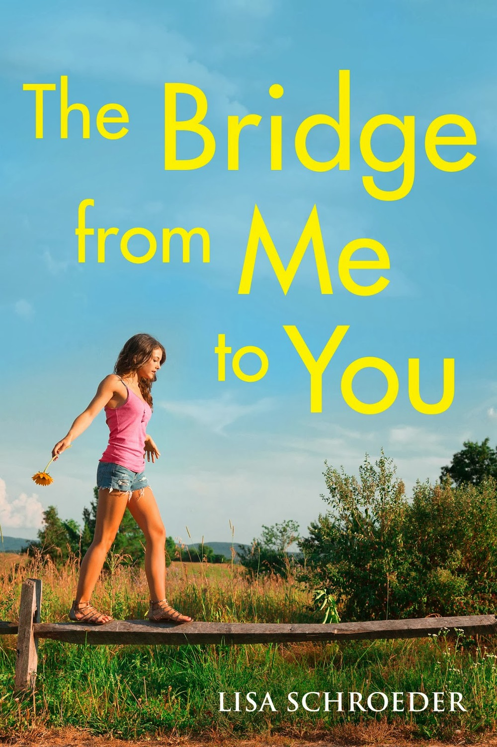 The Bridge from Me to You by Lisa Schroeder | Clear Eyes, Full Shelves