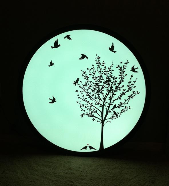 tree circle 3.JPG