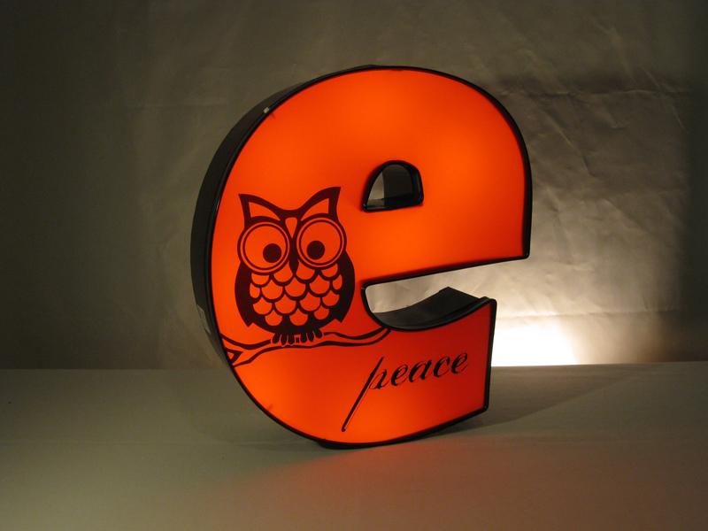 e owl 2.JPG