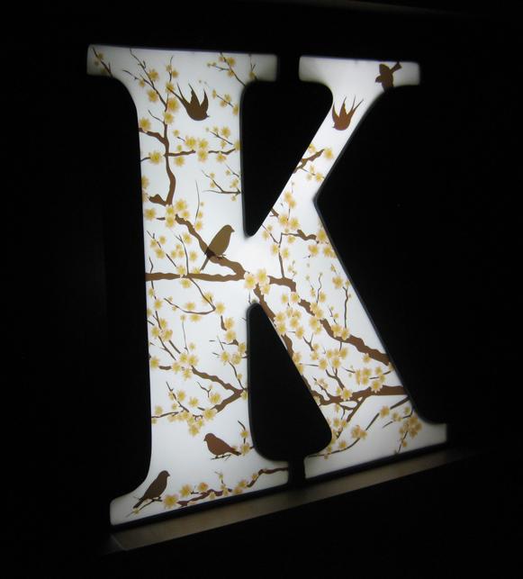 kristie K lit 2.JPG