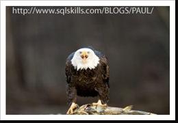 eagle copy