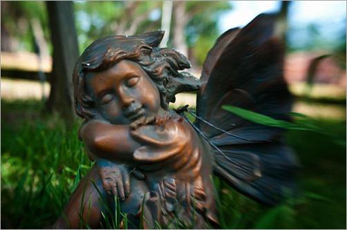 gardenangel500