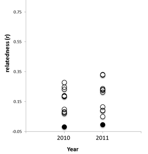 Fig. 3.   Mean pairwise relatedness values for offspring from ten breeding groups of Olympia oysters,   Ostrea lurida  , in 2010 and 2011 (open circles) and from pairs randomly sampled from each year (closed circles).