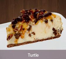 Flavor_Turtle.jpg