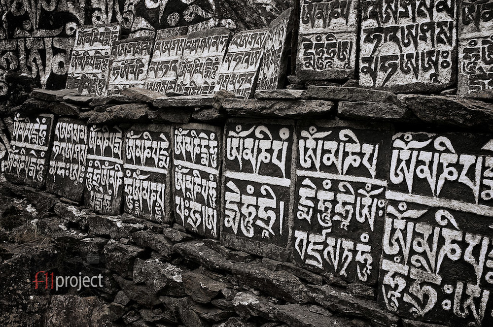 AU_Himalayas_7604.jpg