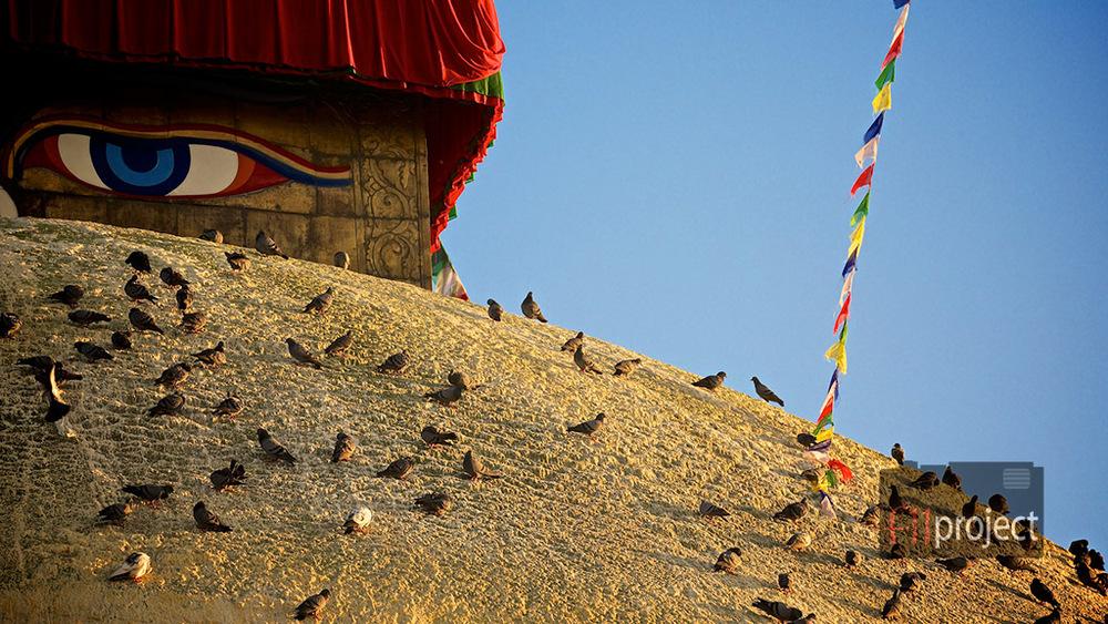 Grand stupa. Boudhanath, Kathmandu, Nepal