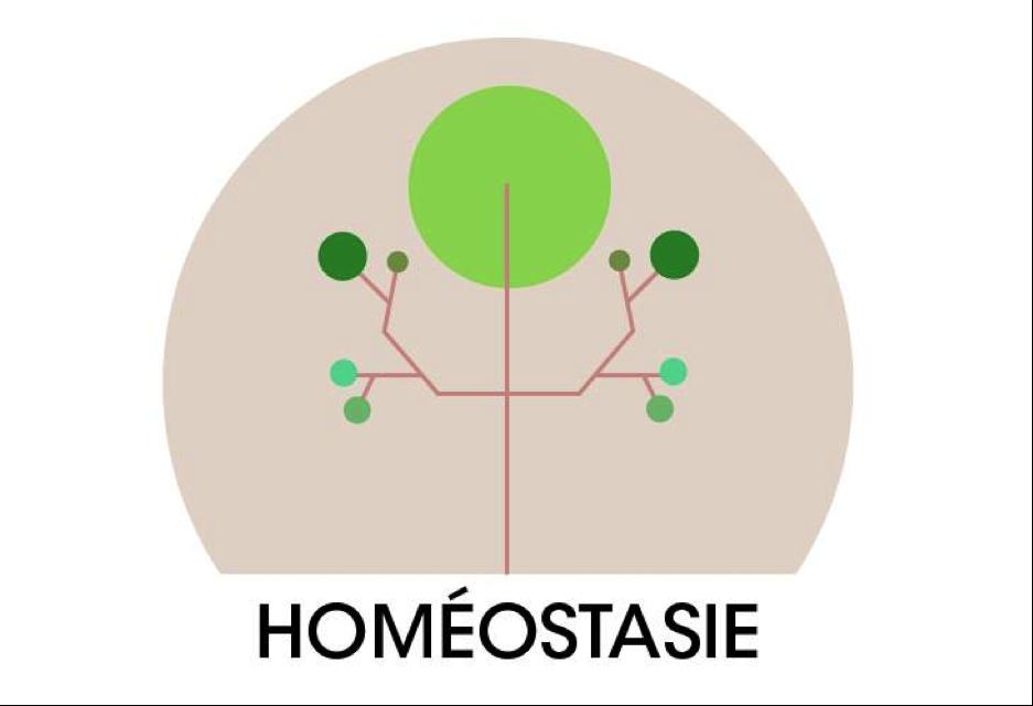 HOmeostasie (2015)