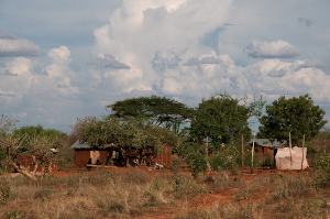 A Wataita homestead bordering the Tsavo East National Park. Poverty engenders wider social challenges, including insecurity, vulnerability to destabilizing external influences and susceptibility to human-wildlife conflict. Participatory conservation and nature-based enterprises can mitigate many of the challenges faced by marginalized communities in the Tsavo region.