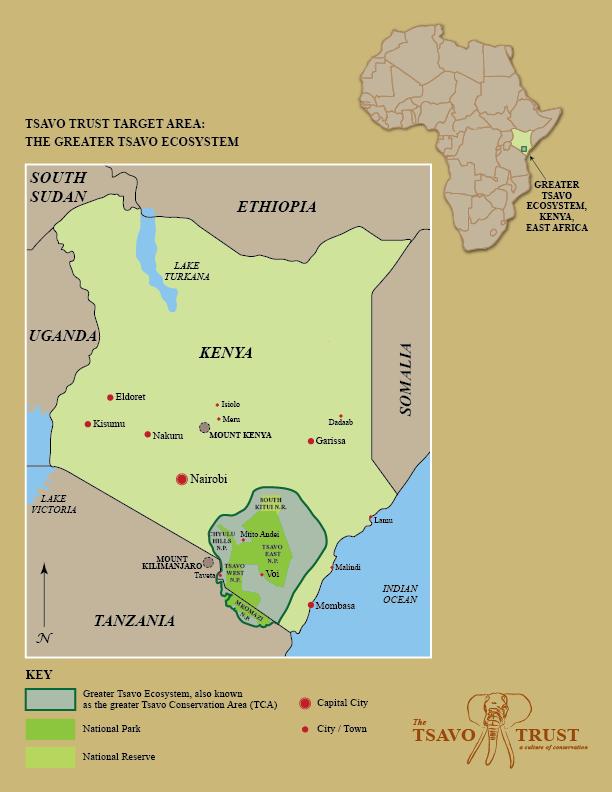 tca in africa-01.png