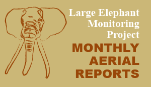 monthly aerial reports - large elephant monitoring project
